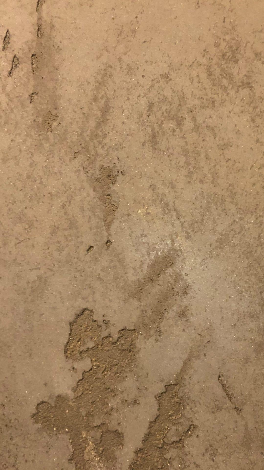 venetian plaster behr